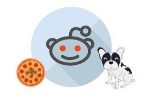 french bulldog reddit