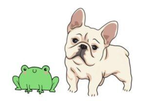 frog dog french bulldog