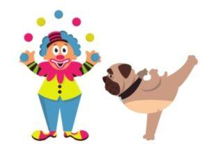 clown dog french bulldog
