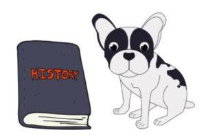 french bulldog mixed with pomeranian history