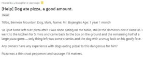can dogs eat pizza reddit