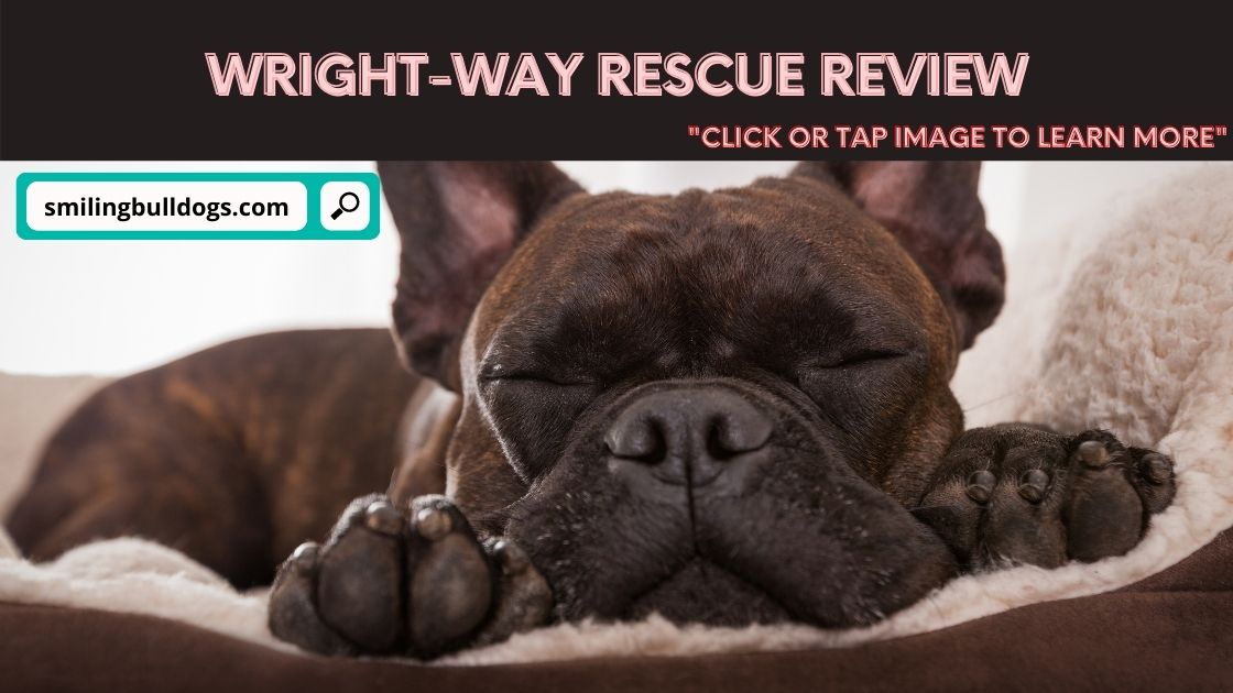 Wright-Way Rescue Review