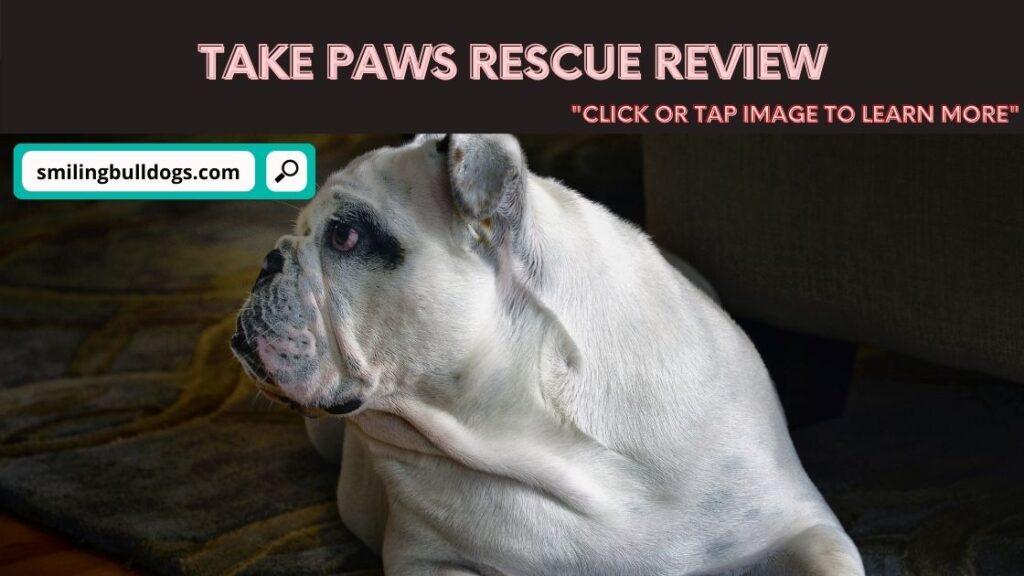 Take Paws Rescue Review
