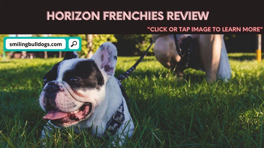 Horizon Frenchies Review