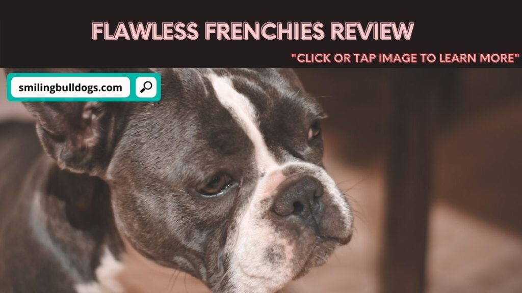 Flawless Frenchies