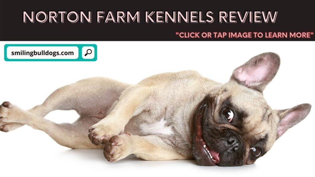 Norton Farm Kennels Review